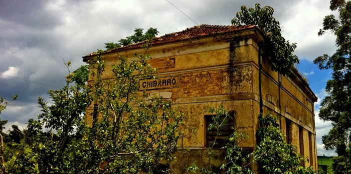 CHIBARRO