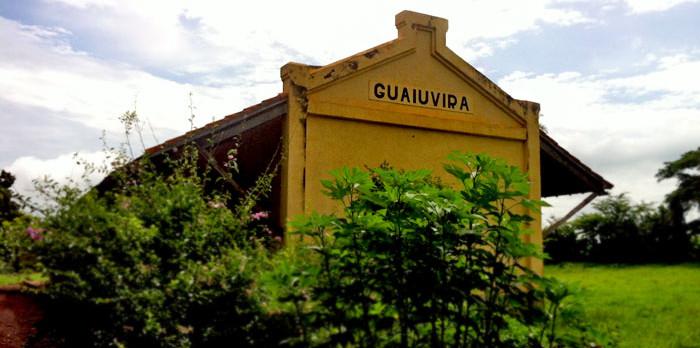 GUAIUVIRA