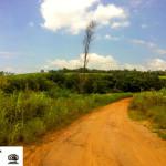 A localização de Santa Esméria é esta, ao lado daquela árvore seca.
